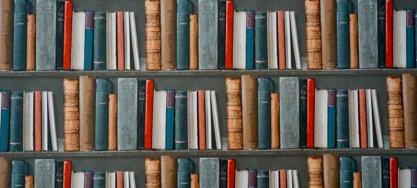Biweekly Book Pick